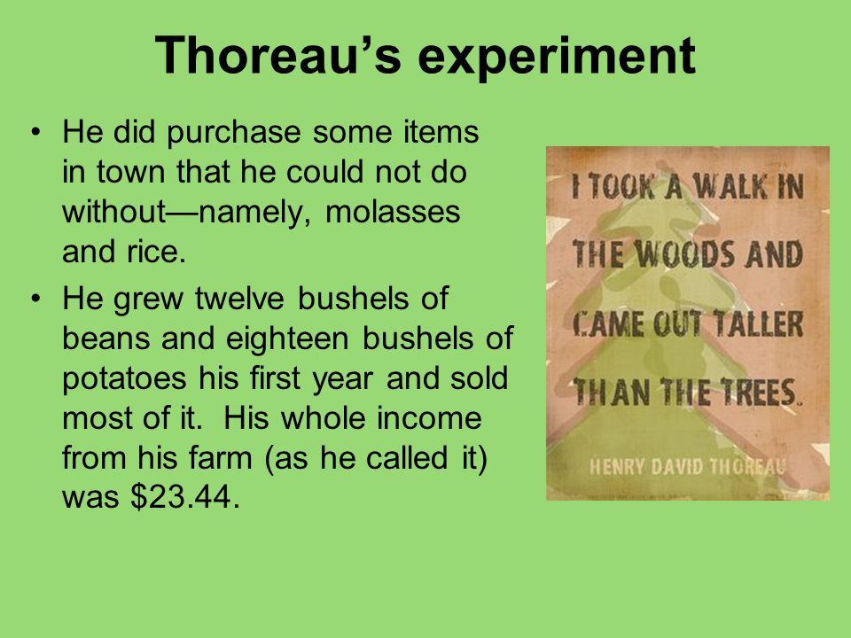Thoreau's experiment He did purchase some items in town that he could not do without—namely, molasses and rice.