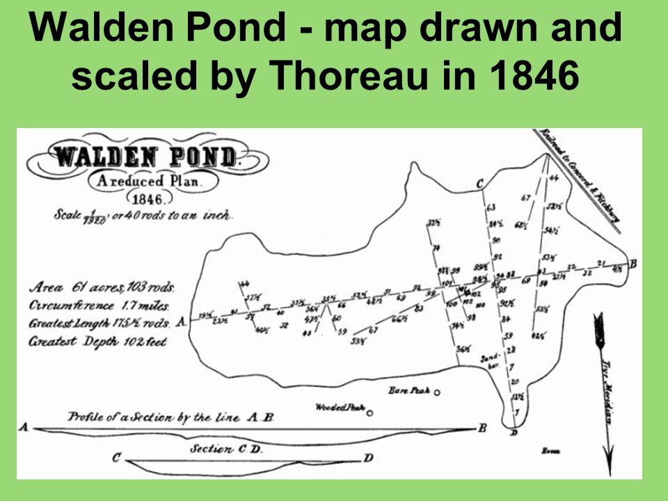 Walden Pond - map drawn and scaled by Thoreau in 1846