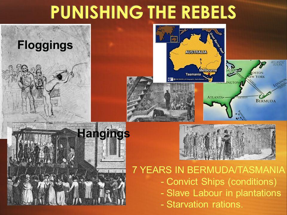 PUNISHING THE REBELS Floggings Hangings 7 YEARS IN BERMUDA/TASMANIA