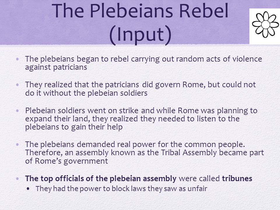 The Plebeians Rebel (Input)