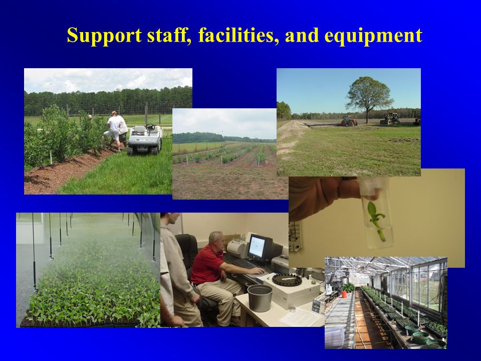 Support staff, facilities, and equipment