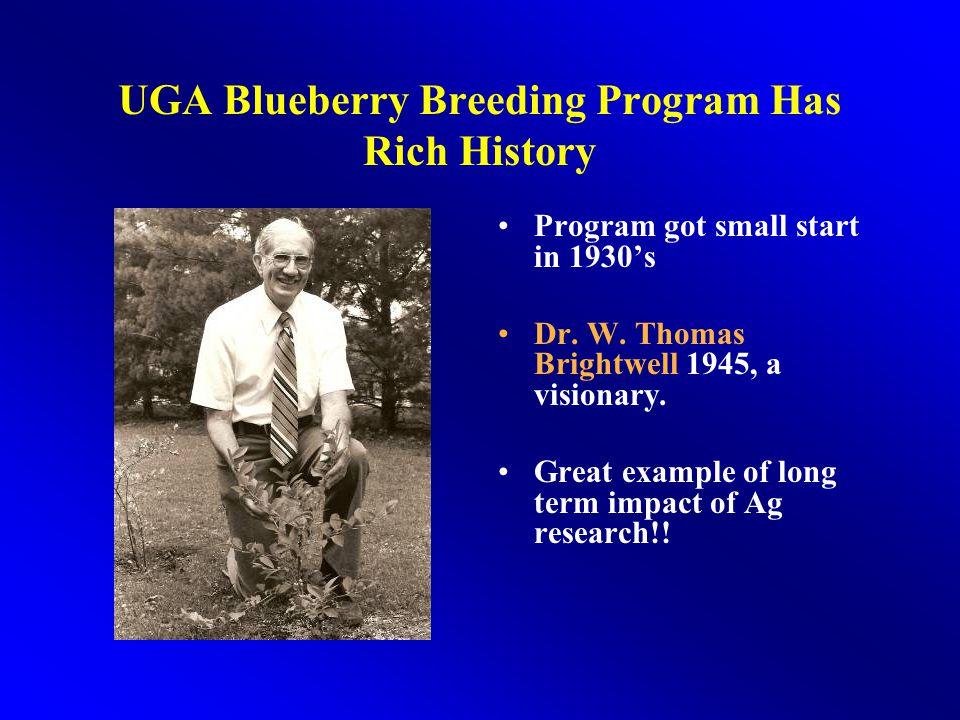 UGA Blueberry Breeding Program Has Rich History
