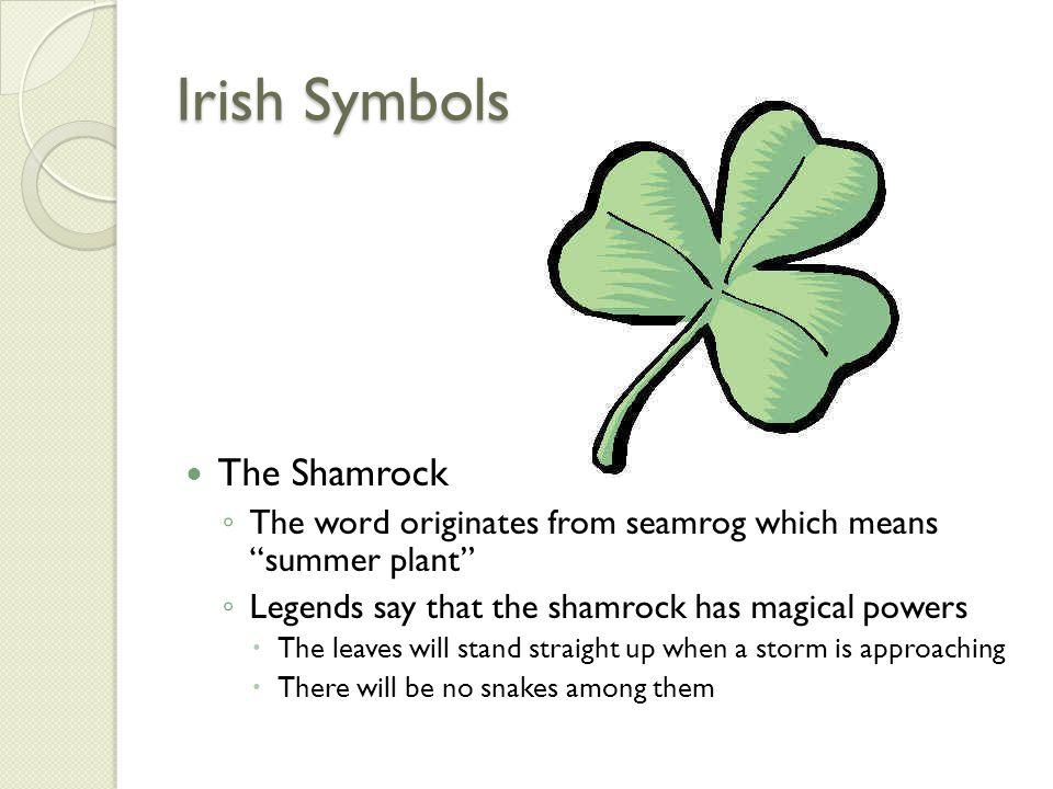 Irish Symbols The Shamrock