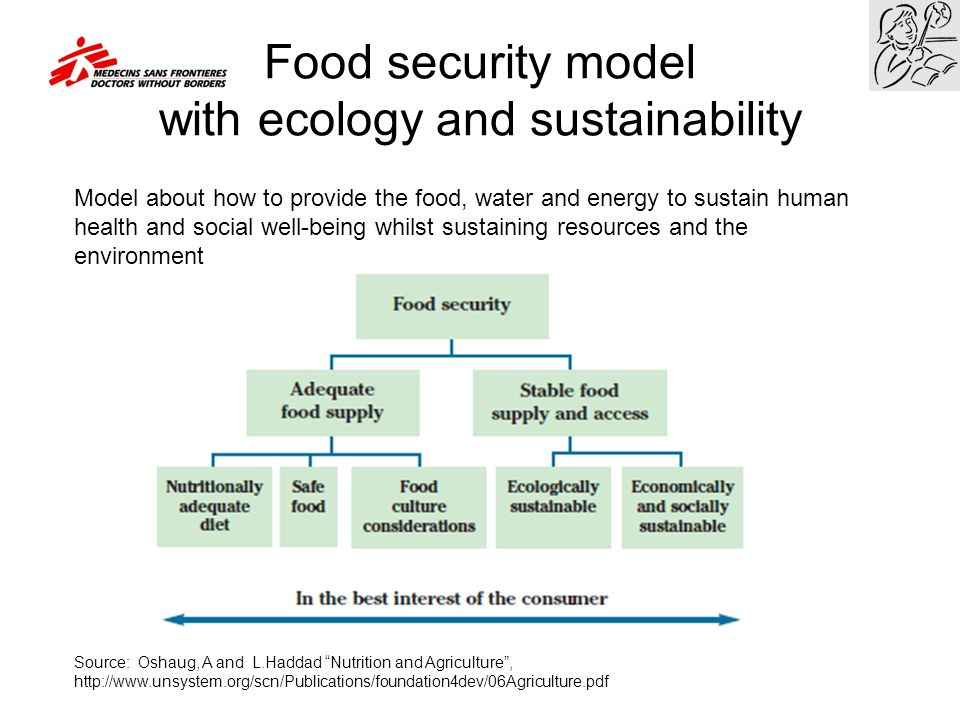 Food security model with ecology and sustainability