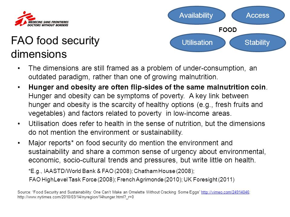 FAO food security dimensions