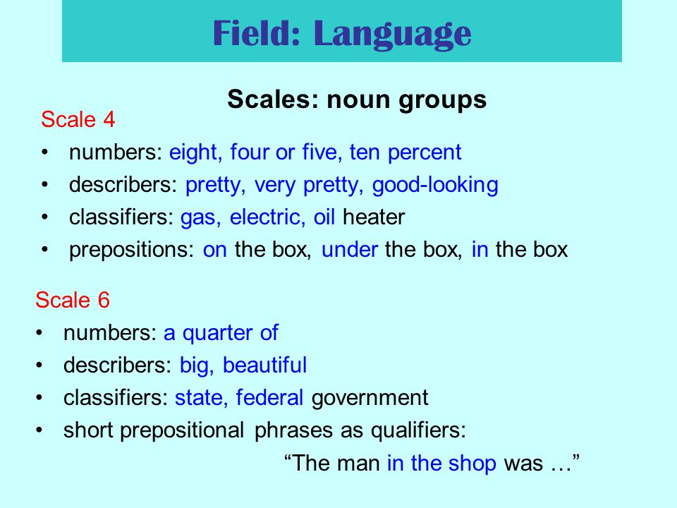 Field: Language Scales: noun groups Scale 4