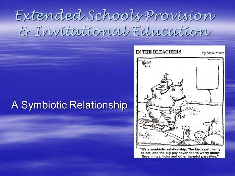 Extended Schools Provision Invitational Education Ppt Video