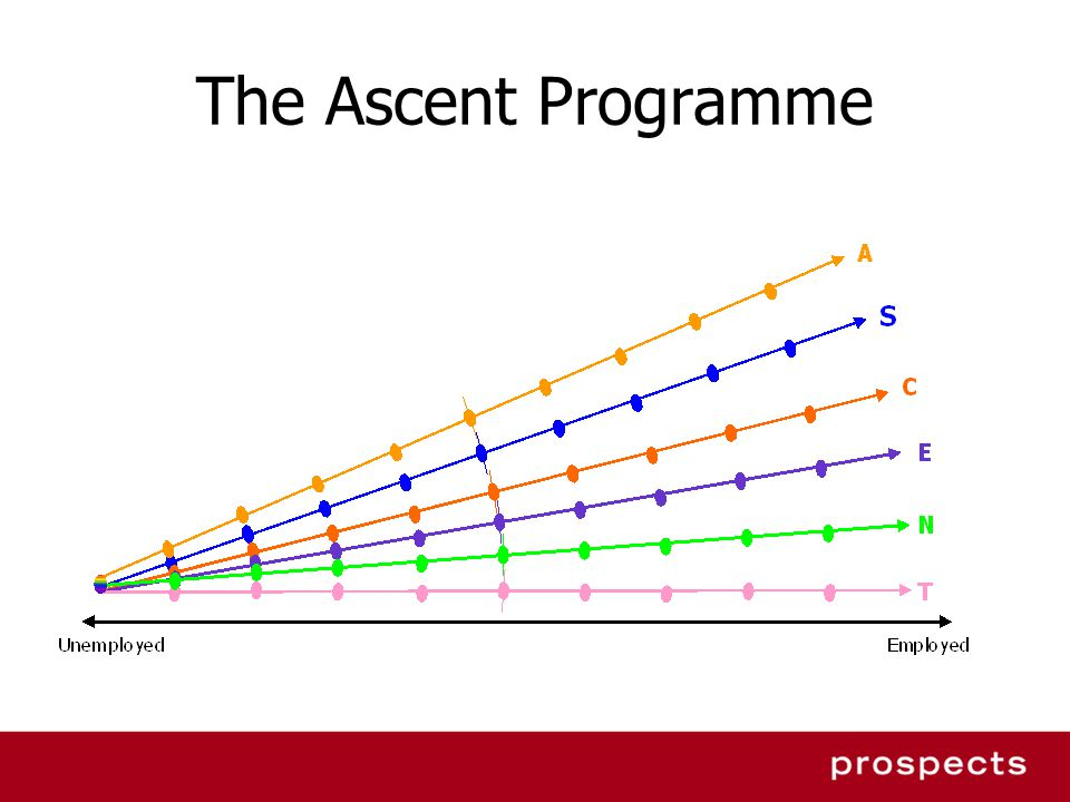 The Ascent Programme