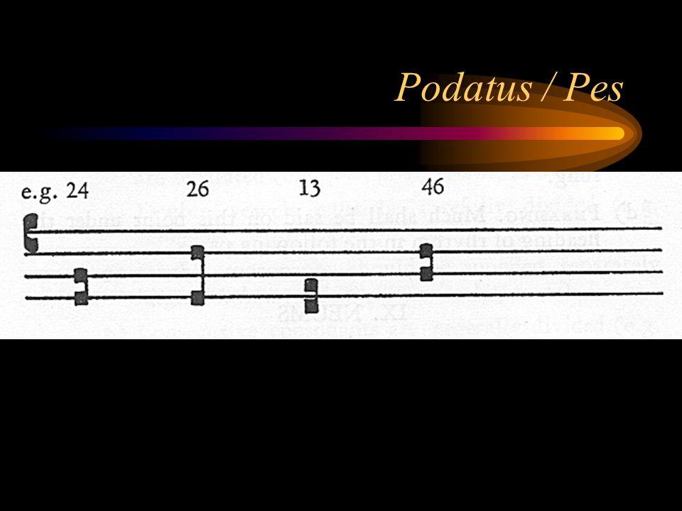 Podatus / Pes