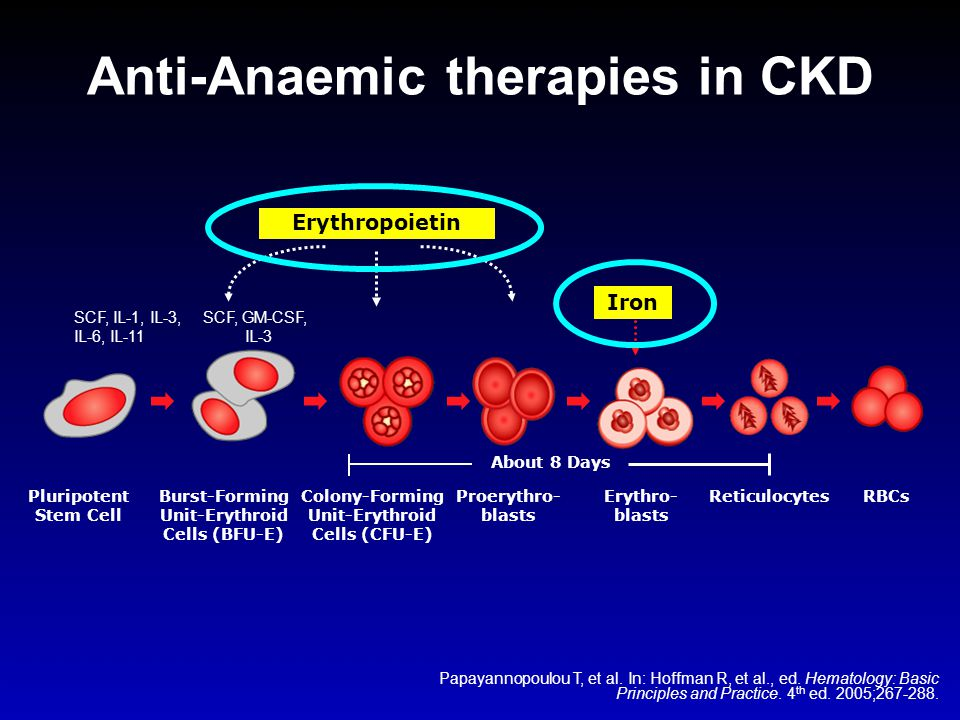 Anti-Anaemic therapies in CKD
