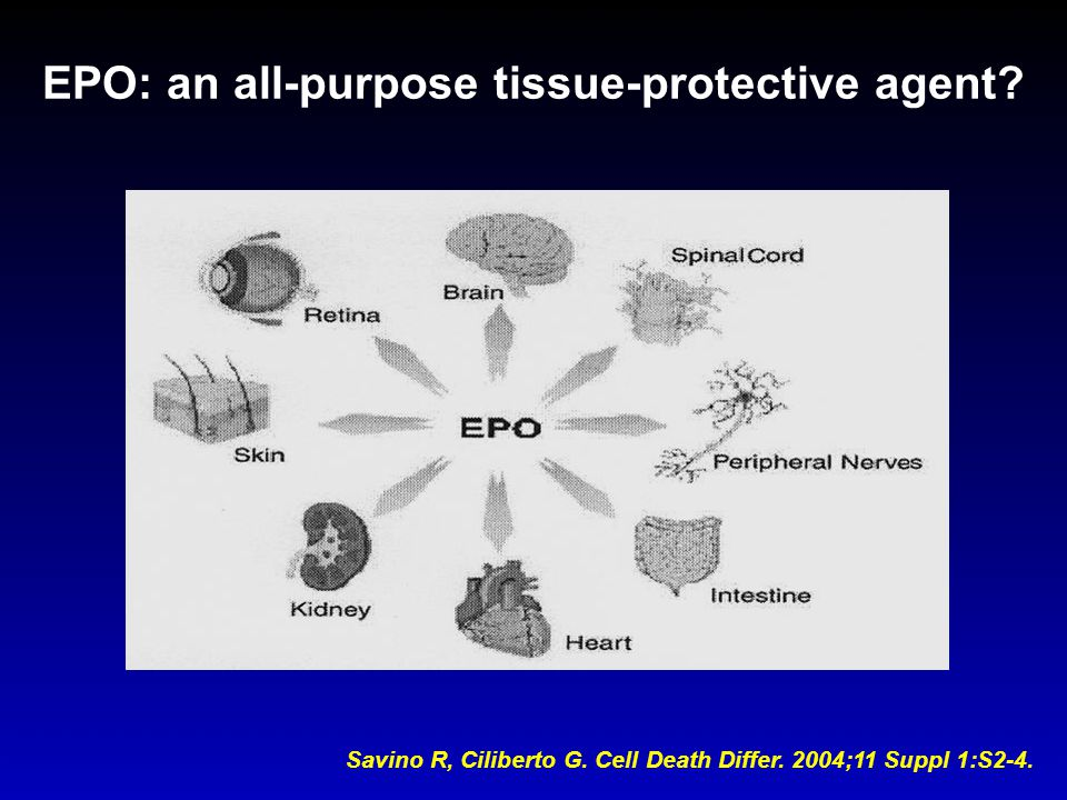 EPO: an all-purpose tissue-protective agent
