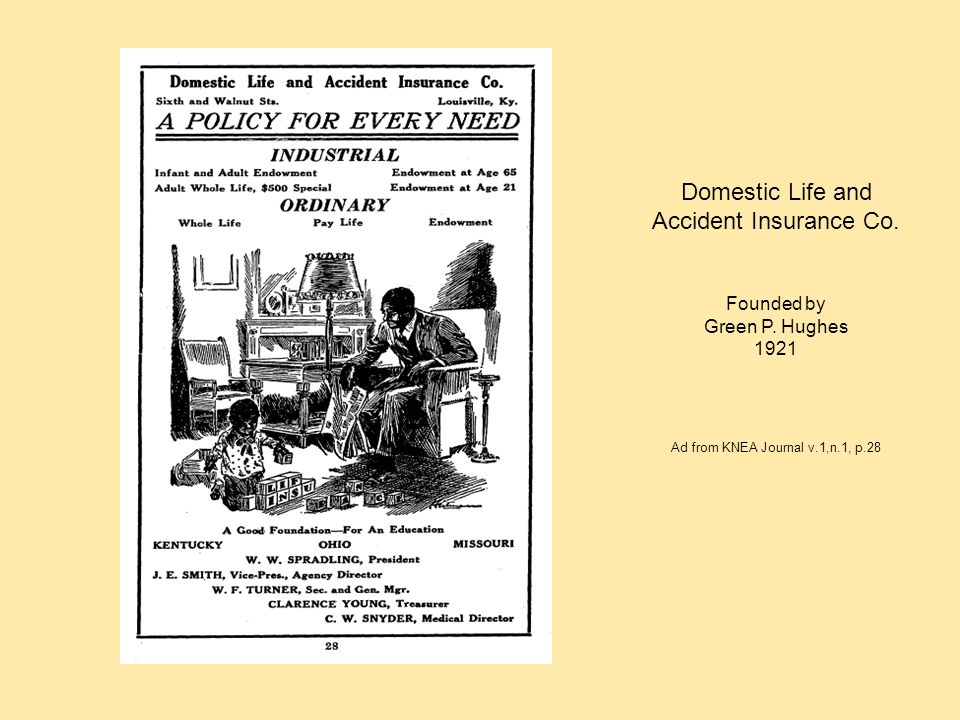 Domestic Life and Accident Insurance Co.