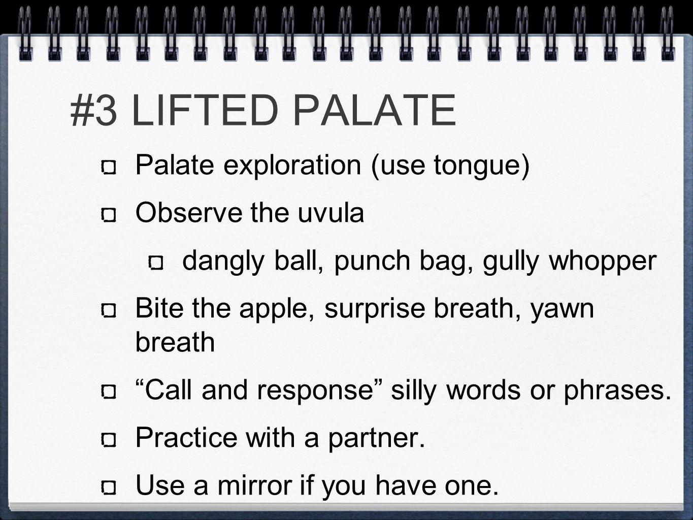 #3 LIFTED PALATE Palate exploration (use tongue) Observe the uvula