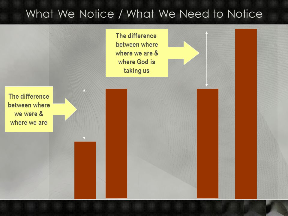 What We Notice / What We Need to Notice