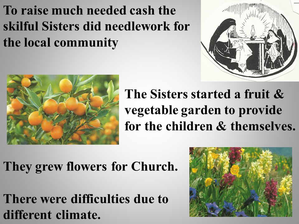 To raise much needed cash the skilful Sisters did needlework for the local community