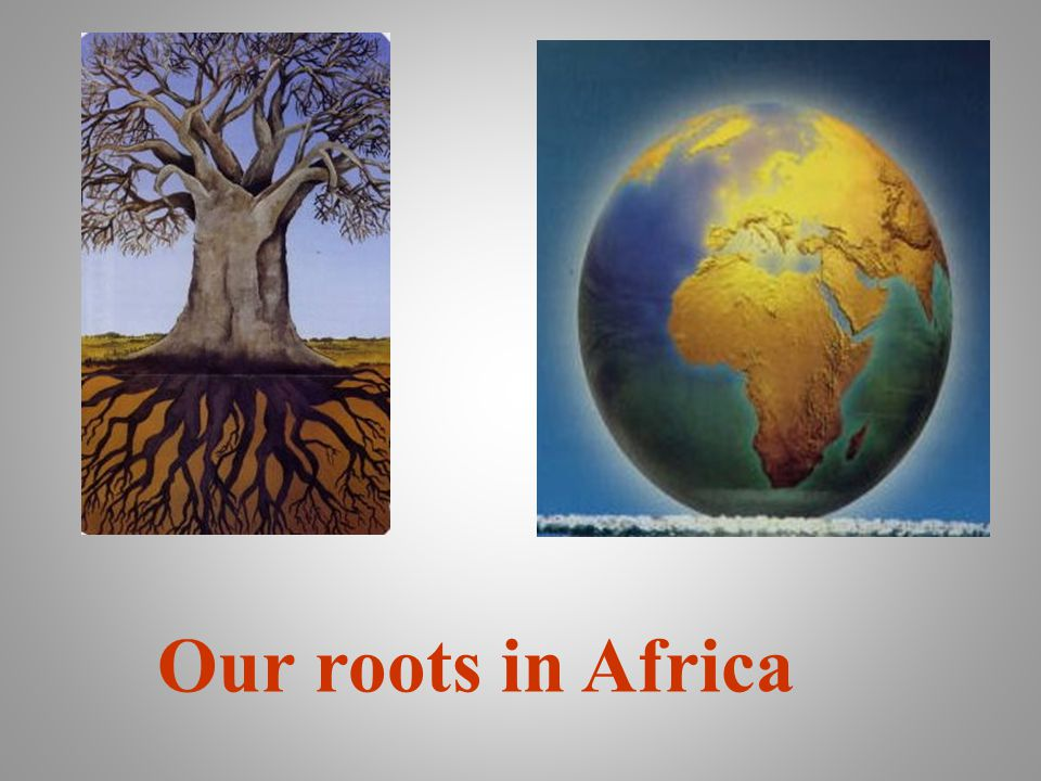 Our roots in Africa