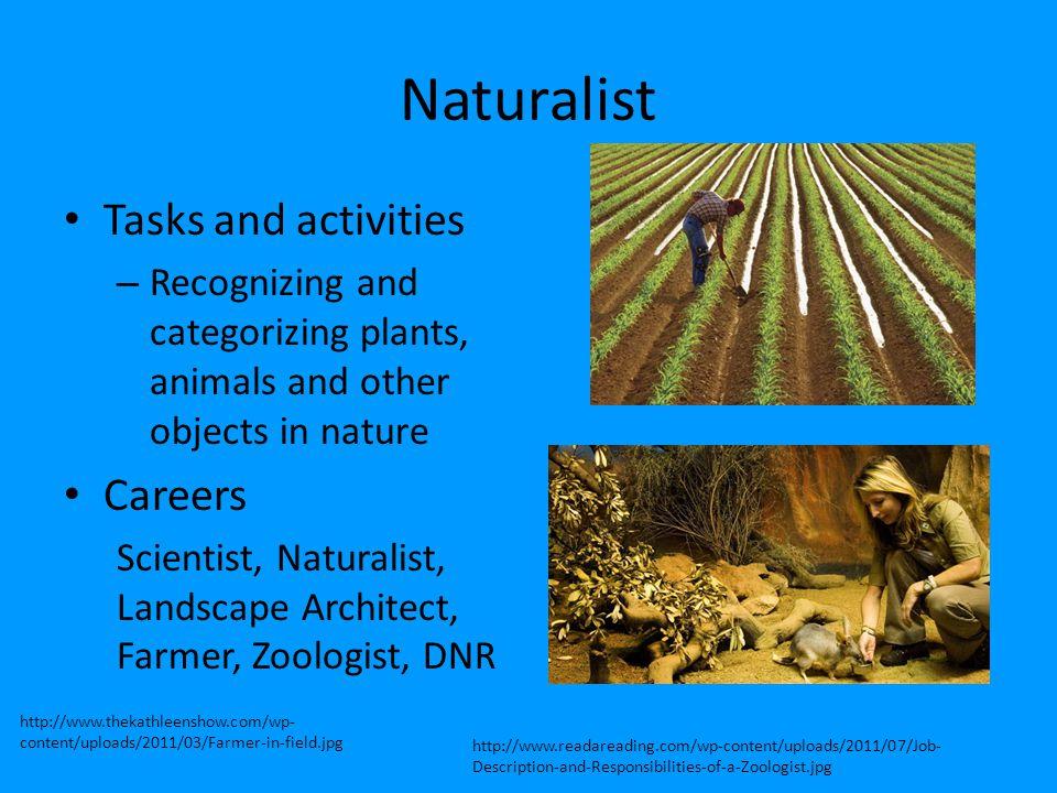 Naturalist Tasks and activities Careers