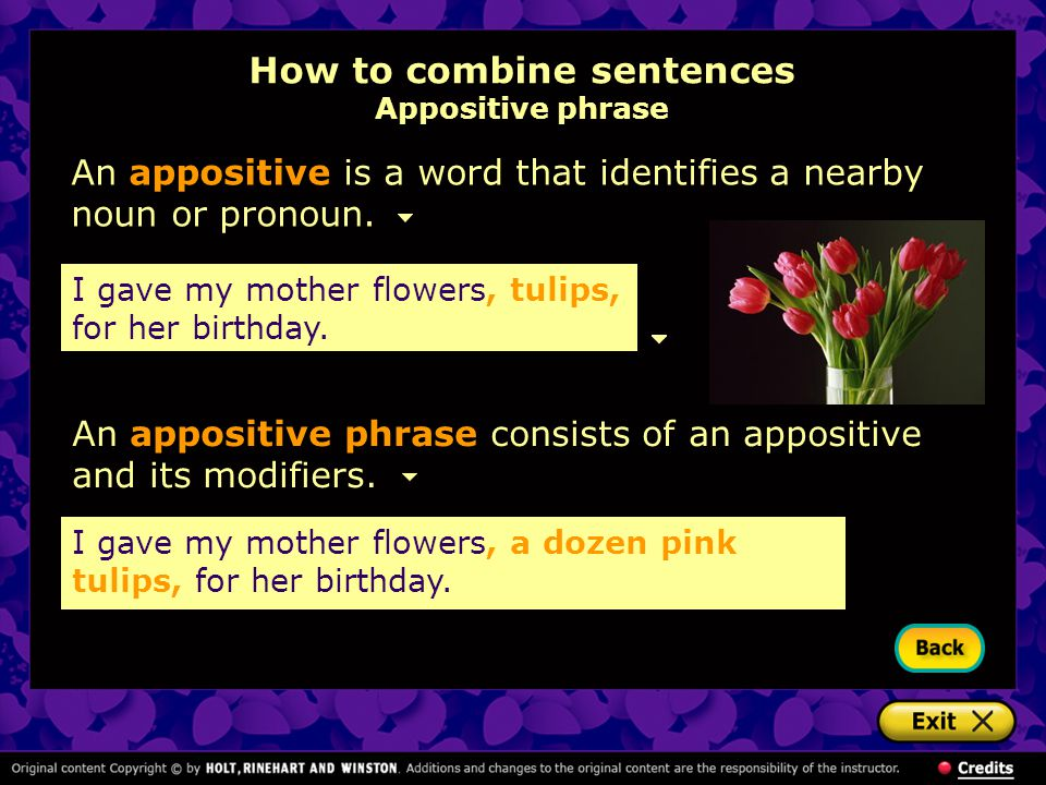 How to combine sentences Appositive phrase