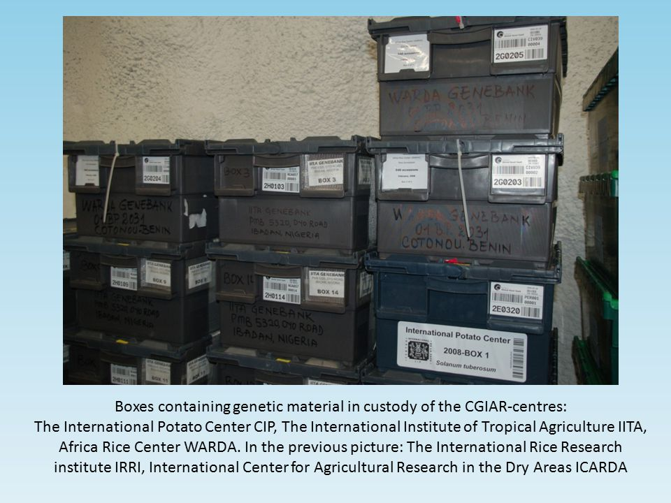 Boxes containing genetic material in custody of the CGIAR-centres:
