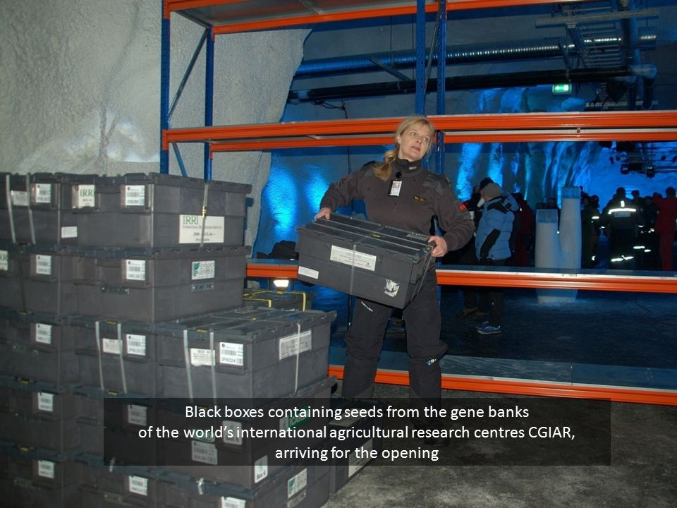 Black boxes containing seeds from the gene banks