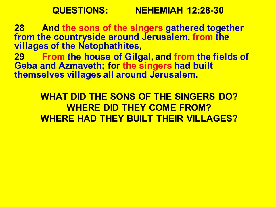 QUESTIONS: NEHEMIAH 12:28-30