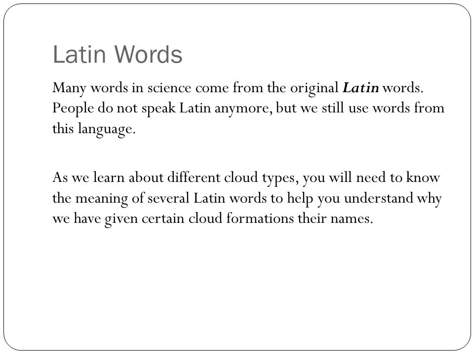 Latin Words