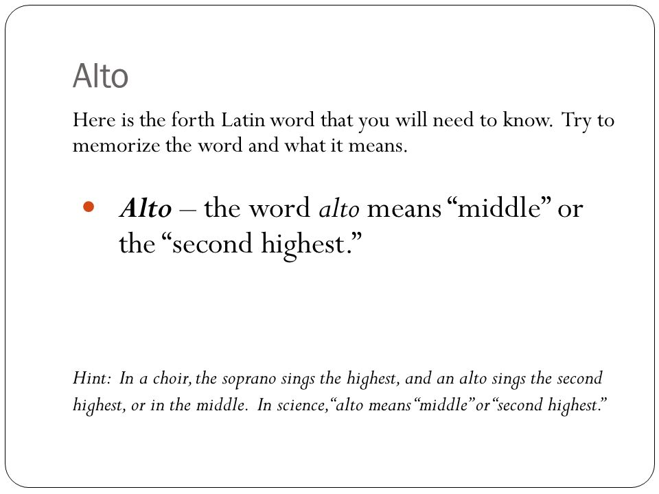 Alto Alto – the word alto means middle or the second highest.