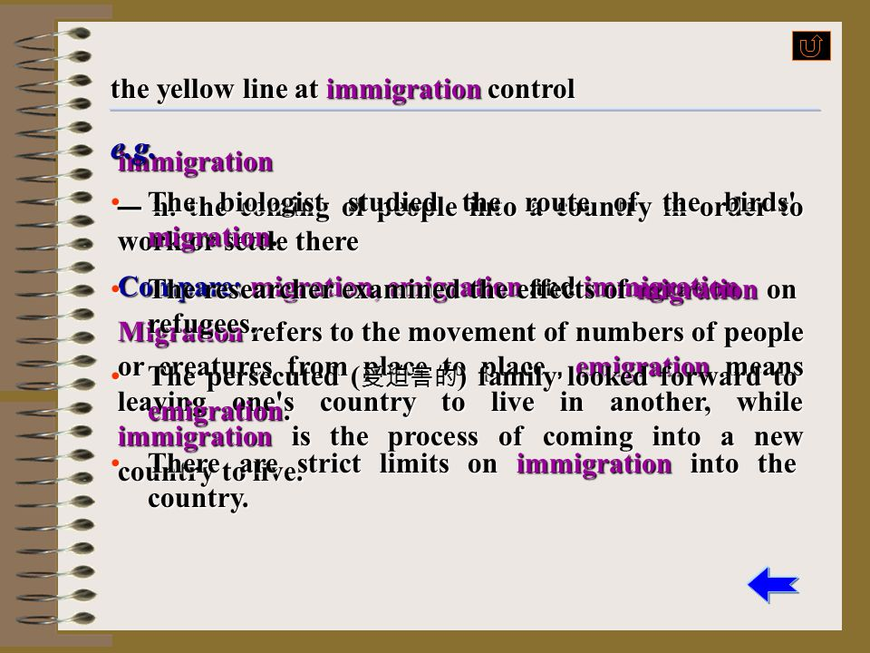 e.g. the yellow line at immigration control immigration