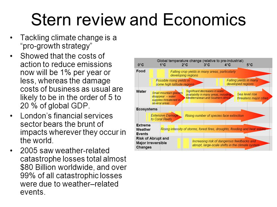 Stern review and Economics