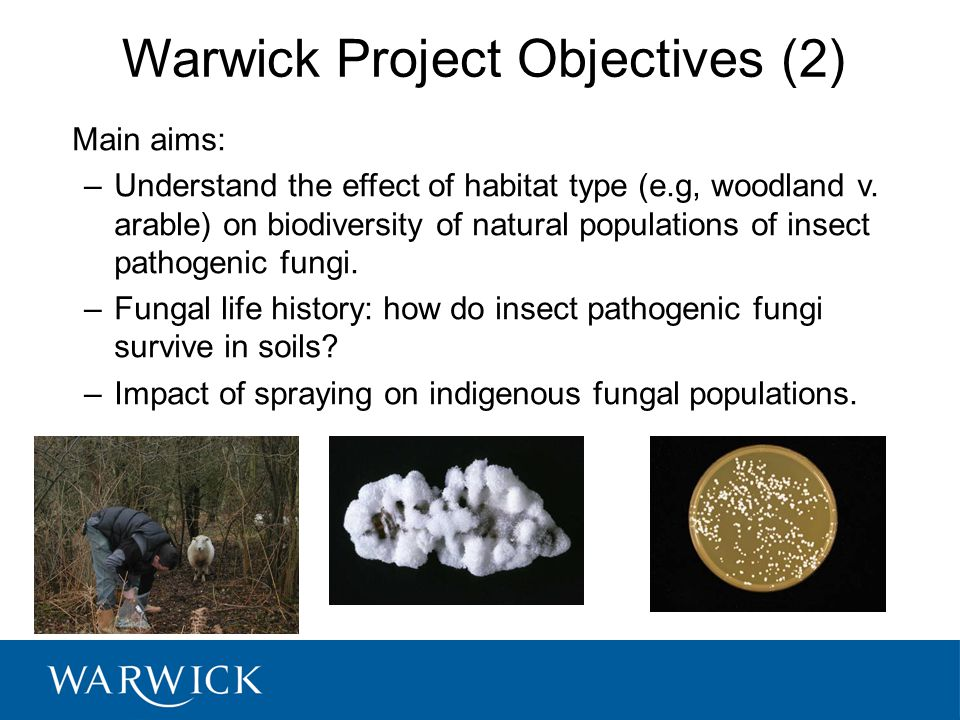 Warwick Project Objectives (2)