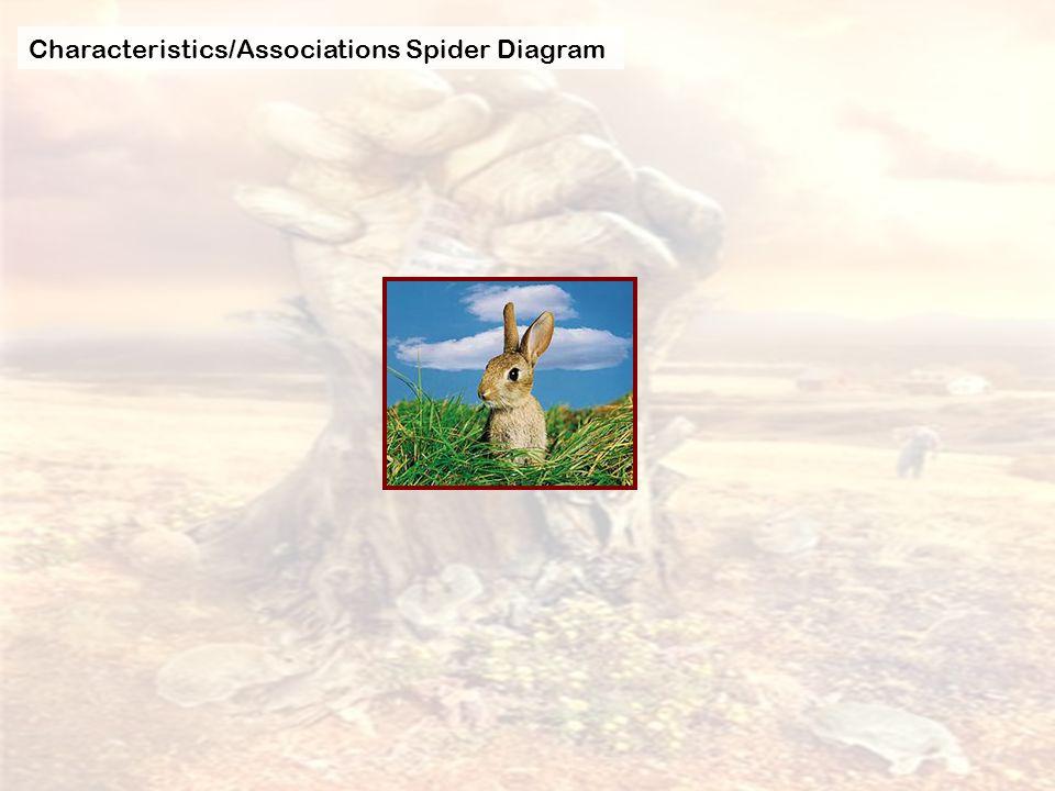 Characteristics/Associations Spider Diagram