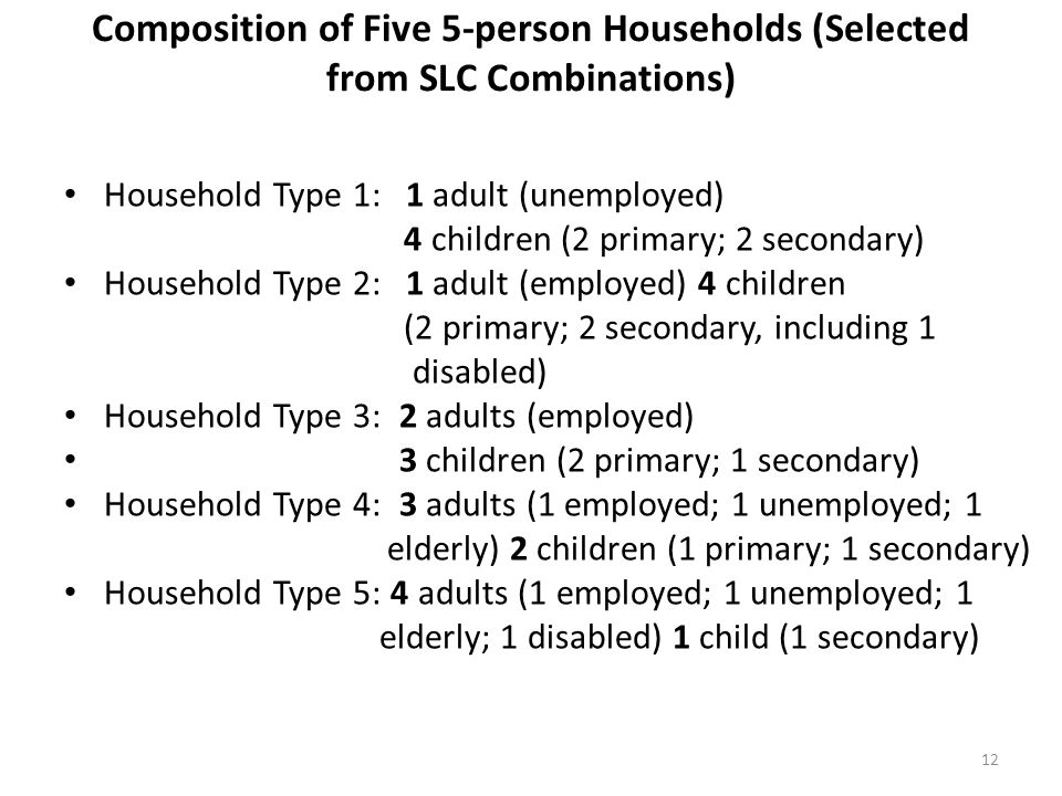 Composition of Five 5-person Households (Selected from SLC Combinations)