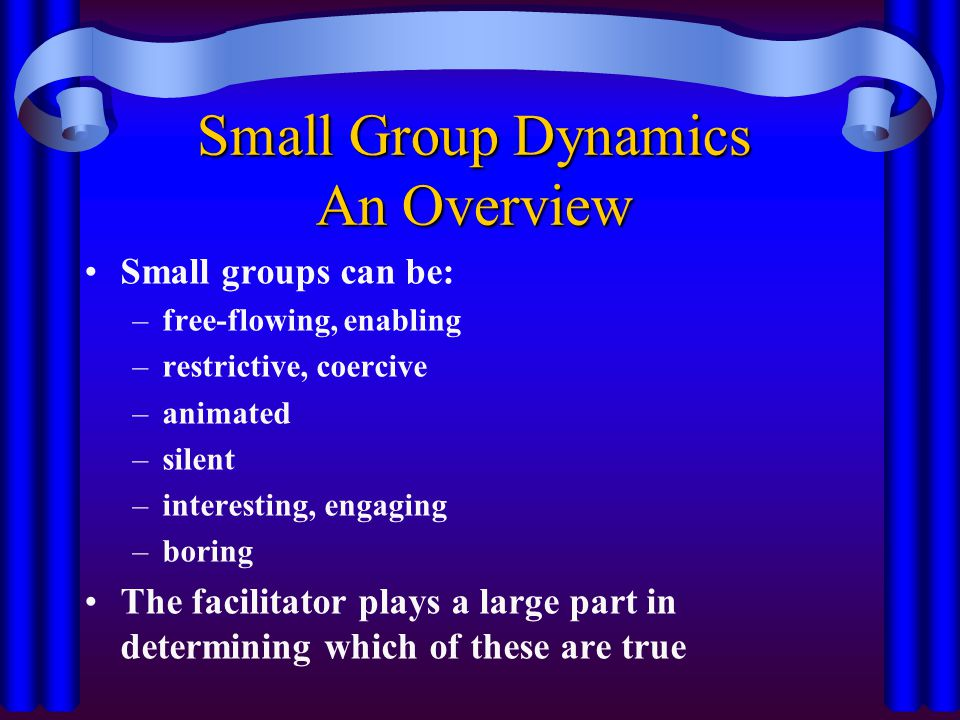 Small Group Dynamics An Overview