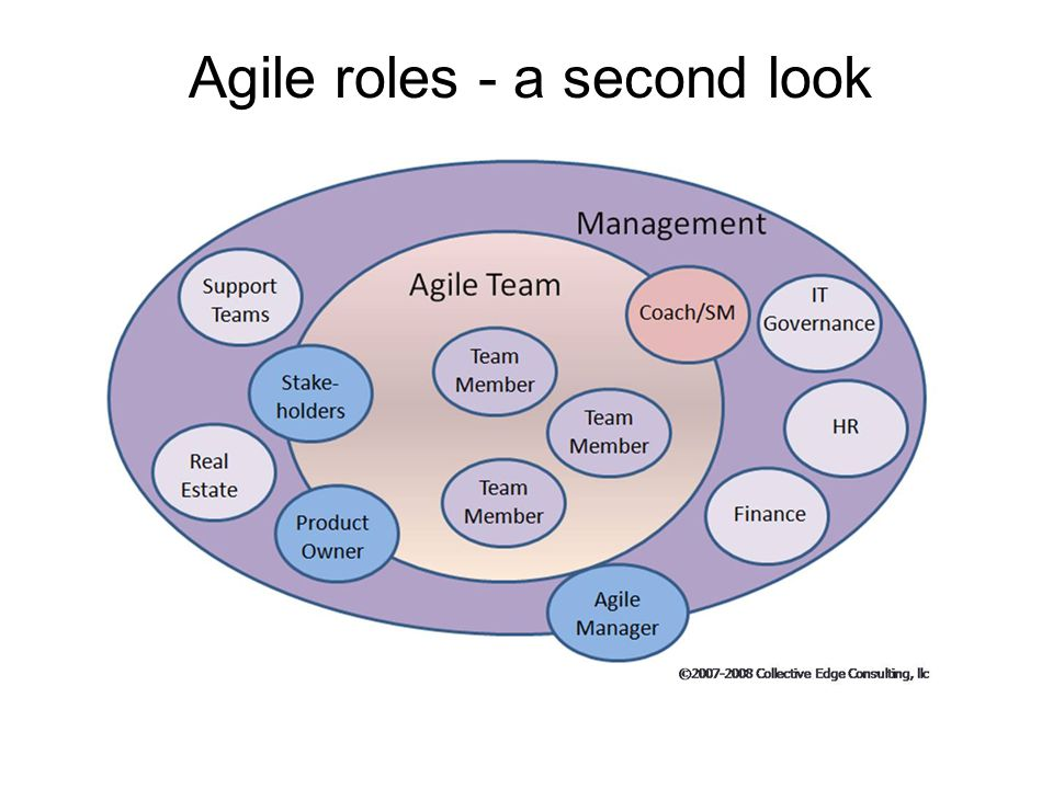Agile roles - a second look