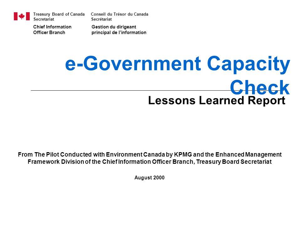 e-Government Capacity Check
