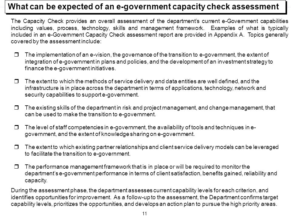 What can be expected of an e-government capacity check assessment