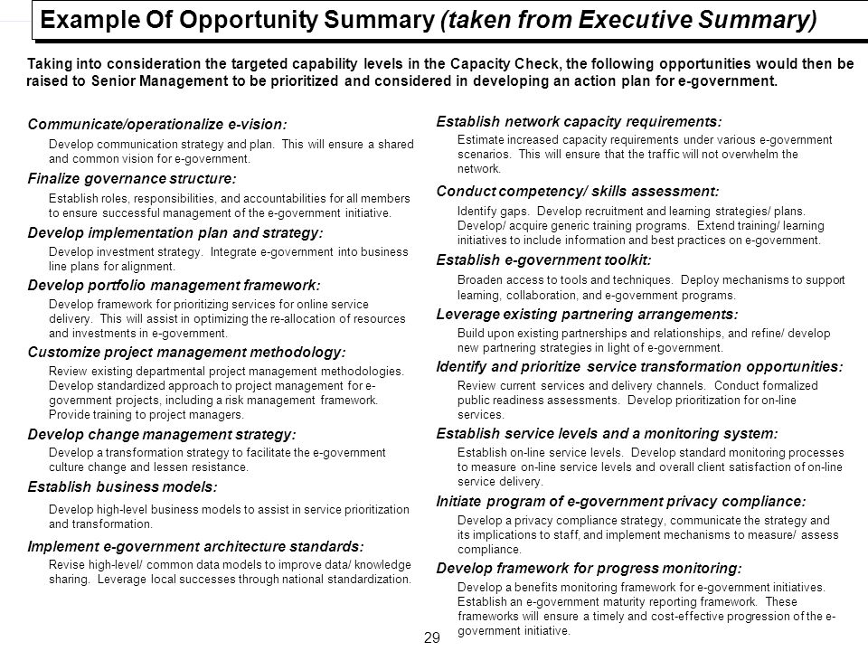 Example Of Opportunity Summary (taken from Executive Summary)