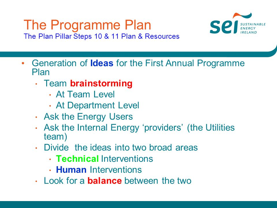 The Programme Plan The Plan Pillar Steps 10 & 11 Plan & Resources