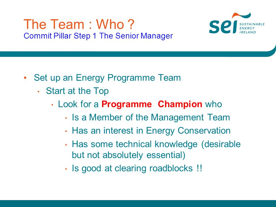 The Team : Who Commit Pillar Step 1 The Senior Manager