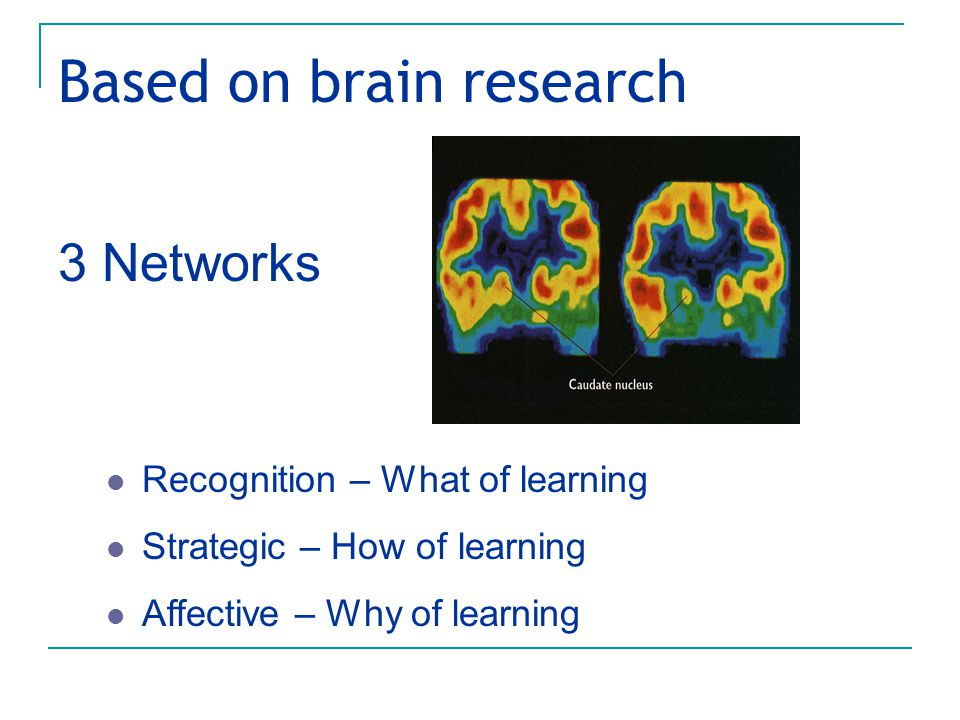 Based on brain research