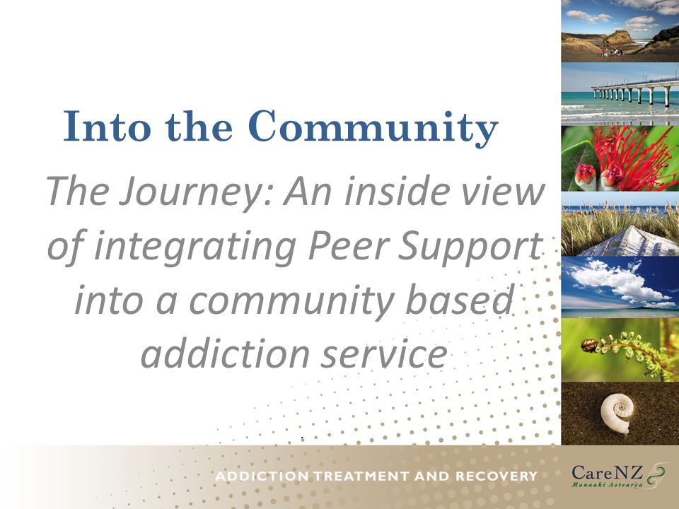 Into the Community The Journey: An inside view of integrating Peer Support into a community based addiction service.