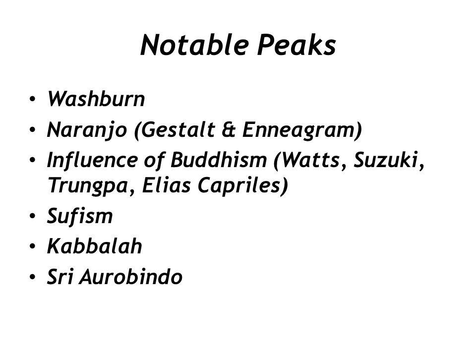 Notable Peaks Washburn Naranjo (Gestalt & Enneagram)