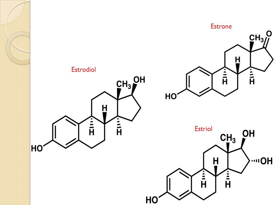 Estrone Estrodiol Estriol