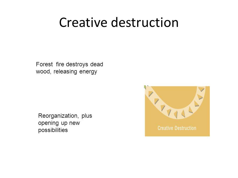Creative destruction Forest fire destroys dead wood, releasing energy