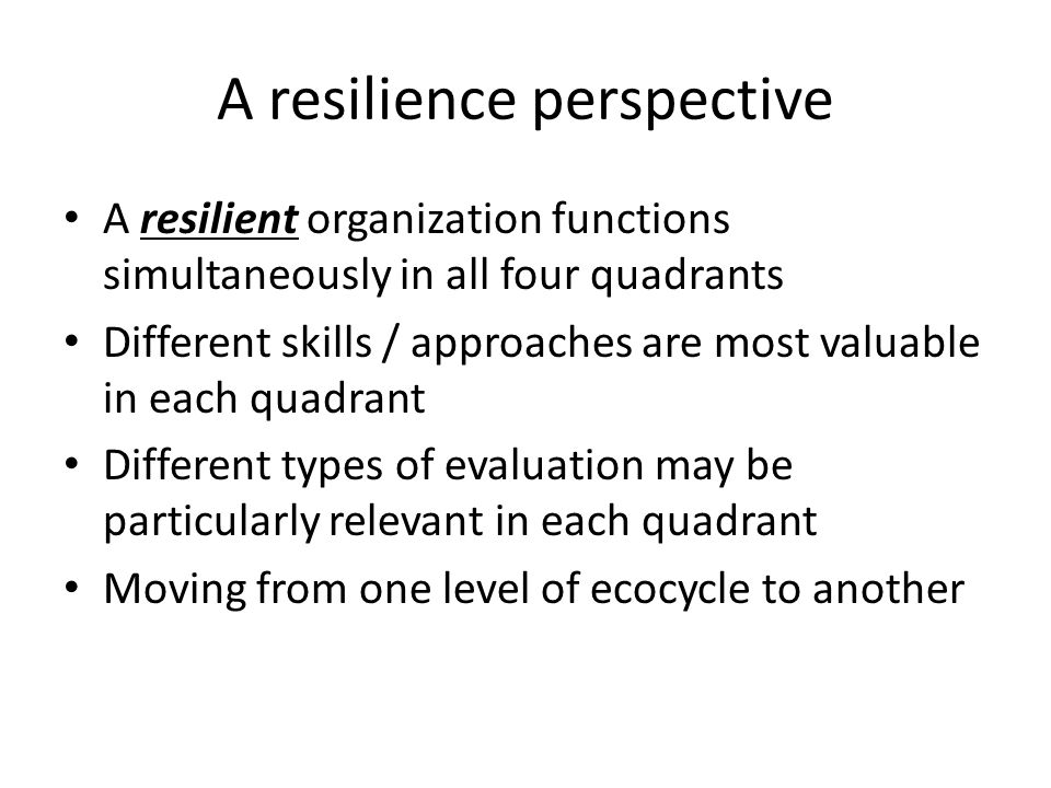 A resilience perspective