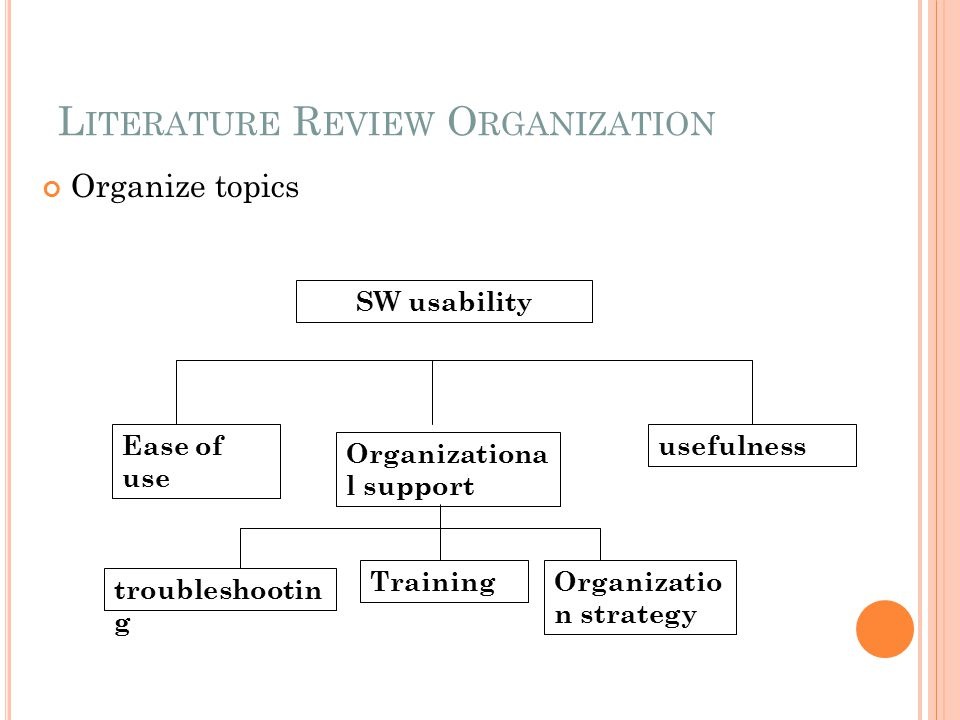 Literature Review Organization