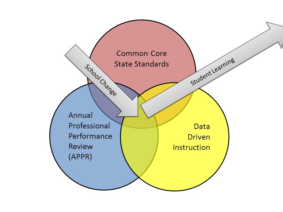 Common Core State Standards Annual Professional Data Performance