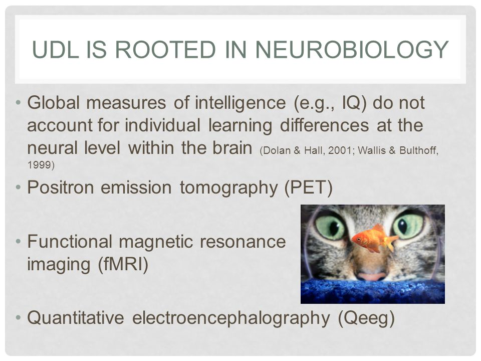 UDL is Rooted in Neurobiology