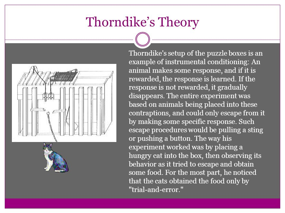 Thorndike's Theory