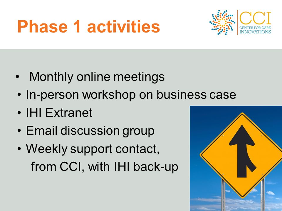 Phase 1 activities Monthly online meetings